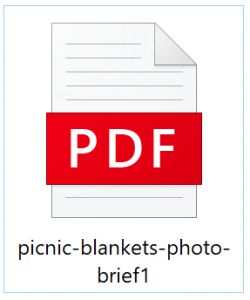 picnic blankets photo brief