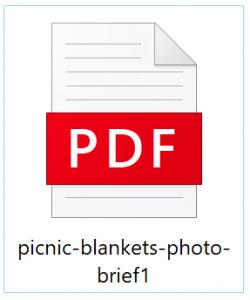 picnic blankets photo brief